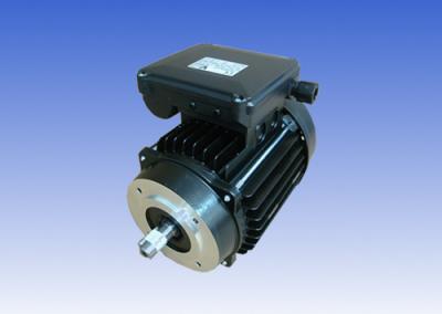 MOTORS IEC