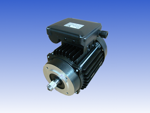 IEC MOTORS